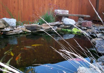 Jamestown Pond 2