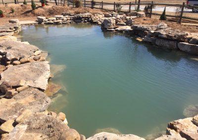 Natural Pool 3