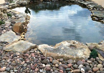 Pond Pics 6