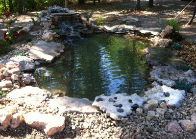 Pond Pics 7