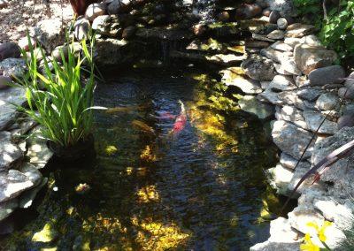 Small Pond WWaterfall
