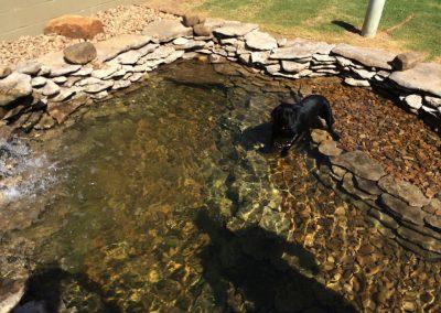 Stone Pond 2
